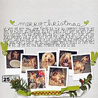 020-01-12-ChristmasDayByCFALBRO.jpg