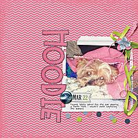 033-03-13-HoodieByCFALBRO.jpg