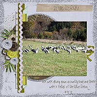 10-12-12-Blue_Heron_Small_.jpg
