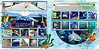 1023-15-Florida-Aquarium-DFD_RandomMemories-1-copy.jpg
