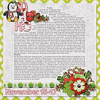 11-November_15-17.jpg