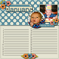 12-11-14_bhs_YourStoryBegins_birthdaycalendar_01january_a_web.jpg