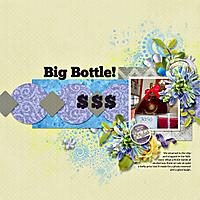 17-Big-Bottle-_-DT_LGT6_temp-copy.jpg
