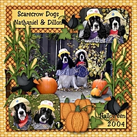 2004-Dill-Nat-Scarecrows.jpg