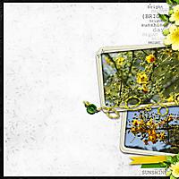 2009-05-07-Yellow-flowers.jpg