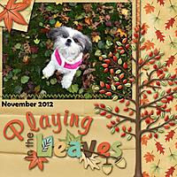 2012-11-2-Daisy.jpg