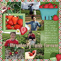 2013-06-Strawberry-Picking_2_.jpg