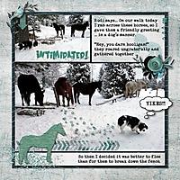 2013-January-Rudi-Horses-Eng.jpg