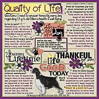 2013-Quality-of-Life.jpg