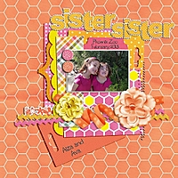 2013_02_23_sister_sister_HFD_Tang_550.jpg