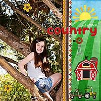 3_22_14_Just_a_Little_Bit_Country.jpg