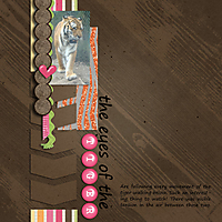 4_1_Simple_Girl_tiger-eyes-web.jpg