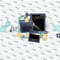 8-fly-away-home-rr0515.jpg
