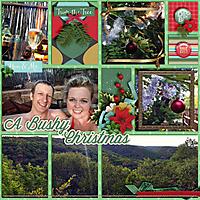 A-Bushy-Christmas-247.jpg