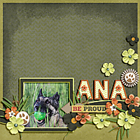 ANA_copy1.jpg