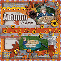 Autumn-is-here_-30-Sept-08.jpg
