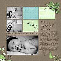 BIGSmallBundle_sm.jpg