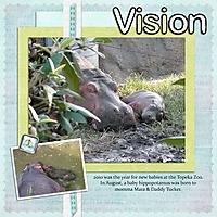 Baby_mine_kit_vision.jpg