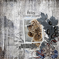 Bailey_PBP.jpg