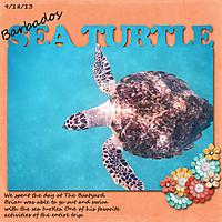 Barbados_Sea_Turtles.jpg