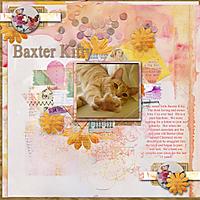 Baxter-Kitty.jpg