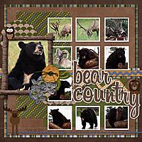 BearCountry1.jpg