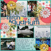 Birch_Aquarium1.jpg