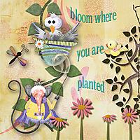 Bloom3.jpg