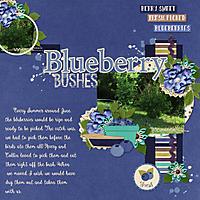 Blueberry_Bushes.jpg