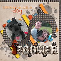 Boomer-for-upload.jpg