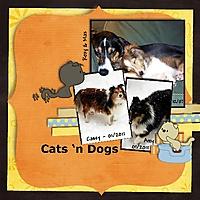 Cats_n_Dogs_500x500.jpg