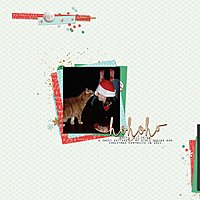 ChristmasPortraits_Outtake2011.jpg
