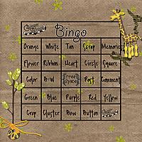 DSD_bingo.jpg