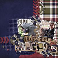 Discoverweb.jpg