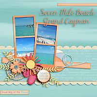 Dreaming_of_the_Beach.jpg