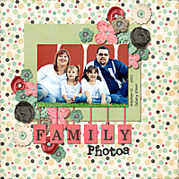 FamilyPhotos2011web.jpg