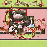 Flamingos_pg_1_Small_.jpg