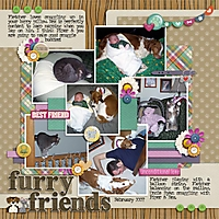 Furry_Friends1.jpg