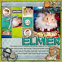 Hamster-dripdrop.jpg
