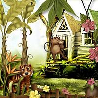 Home-in-the-Jungle.jpg