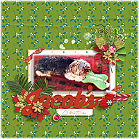 Jacob_s-Christmas-tmMerryandBright.jpg
