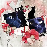 KCO_Cattitude.jpg