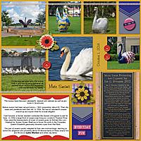 Lakeland-Swans-DT_DBD_temp1-copy-2.jpg