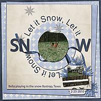 Let_it_Snow_Bastrop_Texas_2-23-2010_-_WD_RTL3_template3.jpg