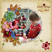 Little_Things_.jpg