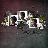 ML_What_do_you_wonder.jpg