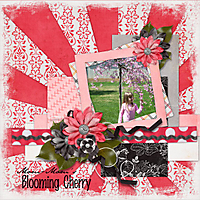 Mom-Mom_s_Blooming_Cherry_Tree.jpg
