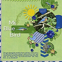 MrBlueBird.jpg