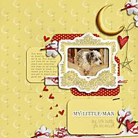 My-Little-Man-lahgd-loveyoutothemoon-0710-copy.jpg