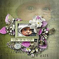 My_gift_of_life_cs.jpg